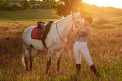 Jockey young girl petting and hugging white horse in evening sunset. Sun flare. Taking care of animals, love and friendship concept. Jockey young girl petting stock images