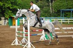 Jockeyen i exponeringsglas hoppar på häst Arkivbilder
