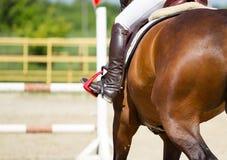 Jockeyreitstiefel und -pferd Lizenzfreie Stockfotografie