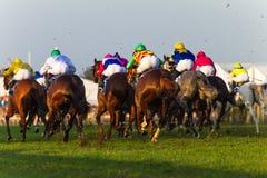 Jockeys de chevaux emballant l'action arrière de Durban juillet Photos stock