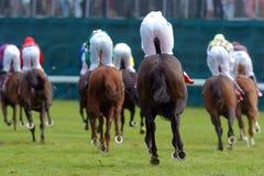 Jockeys on horses 01. Jockeys ride horses on the track at the horseracing Royalty Free Stock Images