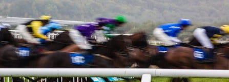 Jockies race past on horses Royalty Free Stock Photos