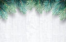 Jodła rozgałęzia się z białą drewnianą teksturą Obraz Royalty Free