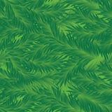 jodły deseniowy bezszwowy drzewa wektor Obrazy Royalty Free