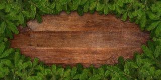 Jodeł gałąź rama na drewnie obraz stock