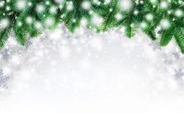 Jodeł gałązki i śnieżny tło Obrazy Stock
