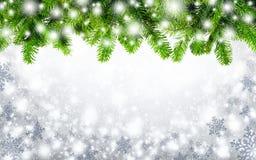 Jodeł gałązki i śnieżny tło Fotografia Royalty Free
