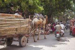 JODHPUR, INDE - 11 JANVIER 2017 : La vie de ville indienne typique à Photo libre de droits