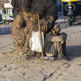 Indian street beggar seeking alms on the street Stock Image