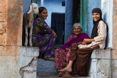 Three women and a goat in Jodhpur Royalty Free Stock Images