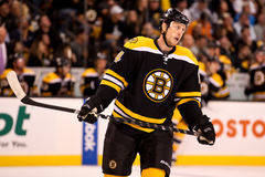 Joe Corvo Boston Bruins Stock Photography
