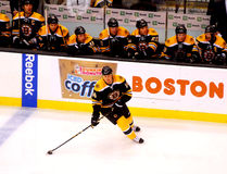 Joe Corvo Boston Bruins defenseman Royalty Free Stock Photo