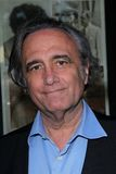 Joe Dante Royalty Free Stock Photo