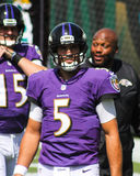 Joe Flacco. Baltimore Ravens QB Joe Flacco Royalty Free Stock Photography