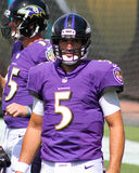 Joe Flacco. Baltimore Ravens QB Joe Flacco Royalty Free Stock Images