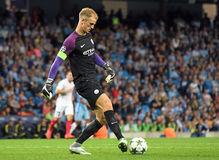 Joe Hart Stockfotografie