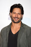 joe manganiello Arkivfoto