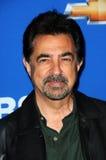 Joe Mantegna Lizenzfreies Stockbild