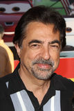 Joe Mantegna Stock Photos