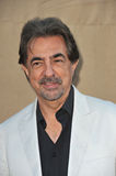 Joe Mantegna Stock Image