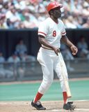Joe Morgan, Cincinnati Reds Fotografie Stock