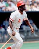 Joe Morgan, Cincinnati Reds. Cincinnati Reds legendary second baseman Joe Morgan. Image taken by color slide royalty free stock image