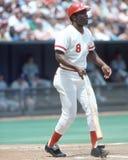 Joe Morgan, Cincinnati Reds. Cincinnati Reds legendary second baseman Joe Morgan. Image taken by color slide stock photos