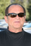 joe pesci Royaltyfri Bild