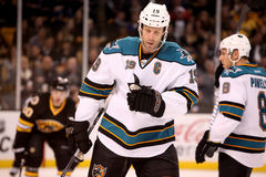 Joe Thornton San Jose Sharks Stock Image