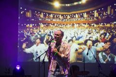 Joe Victor al MI Ami Festival 2018 Fotografia Stock Libera da Diritti
