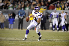 Joe Webb Immagini Stock