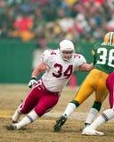 Joel Makovicka, Arizona Cardinals del RB fotos de archivo libres de regalías