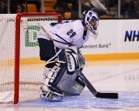 Joey MacDonald, gardien de but de Toronto Maple Leafs Image stock