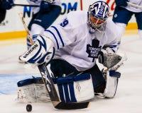 Joey MacDonald, gardien de but de Toronto Maple Leafs Photo stock