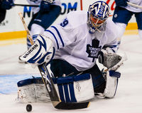 Joey MacDonald, Toronto Maple Leafs goalie. Stock Photo