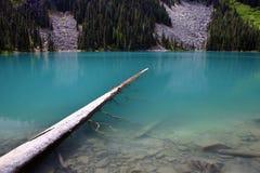 Joffer del lago Fotografia Stock Libera da Diritti
