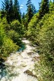 Joffre小河快速流动的水  免版税库存图片