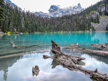 Joffre jezioro Obrazy Stock