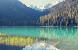 Joffre Lake Royalty-vrije Stock Afbeeldingen