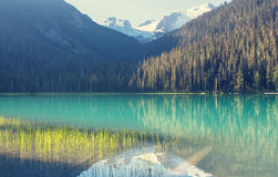 Joffre lake Royalty Free Stock Images