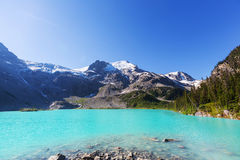 Joffre lake Royalty Free Stock Image