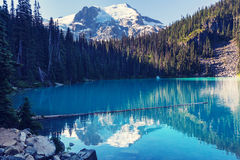 Joffre lake Royalty Free Stock Photography