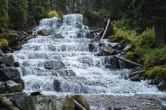 Joffre Lake Hike vattenfall nära Pemberton Royaltyfria Bilder