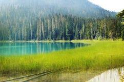 Joffre Lakes F. KR. royaltyfri fotografi