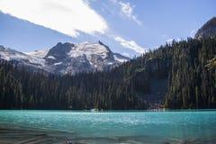 Joffre Lakes Hike Royaltyfri Foto