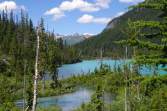Joffre Lakes Provincial Park Royalty Free Stock Image