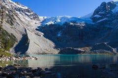 Joffre Provincial Park Arkivfoton