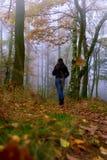 Jog van de herfst royalty-vrije stock foto's