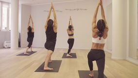 Joga klasa ludzie ćwiczyć joga Bohater poza zbiory wideo