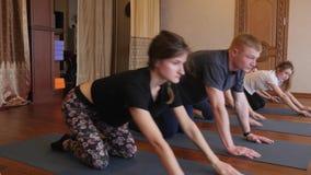 Joga klasa ludzie ćwiczy zdrowego styl życia w sprawności fizycznej studia joga zbiory